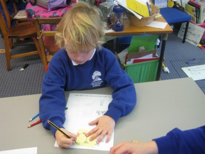 Making a tally chart